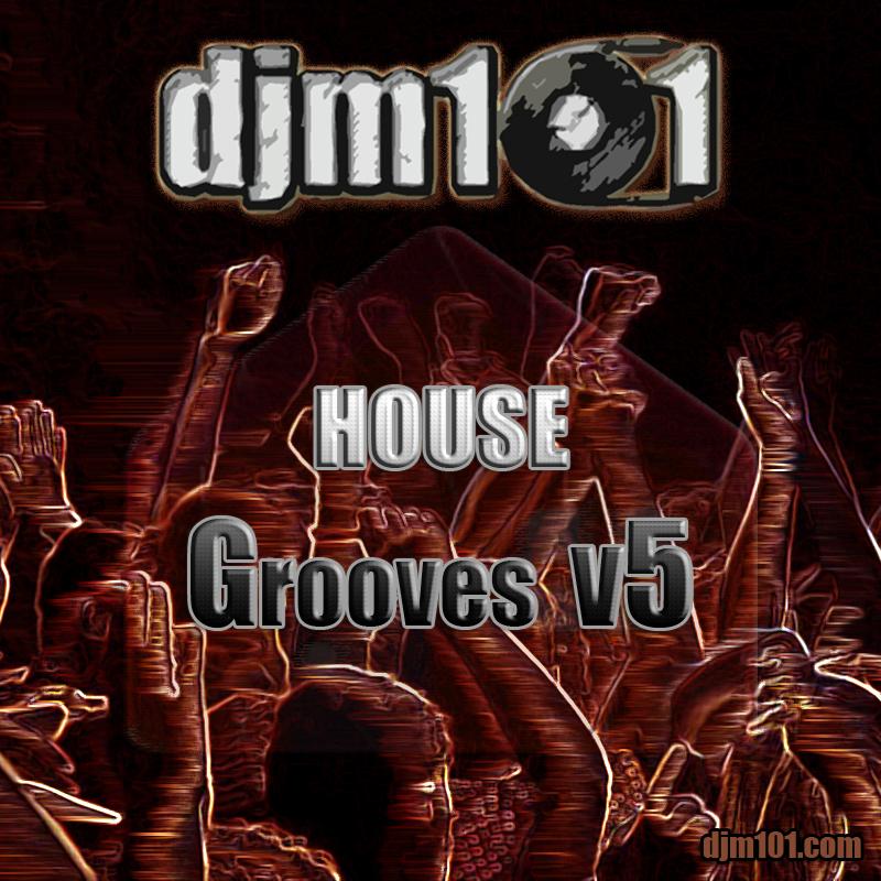 house-grooves-v5-album-art